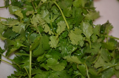 Cilantro, to Top Noodles